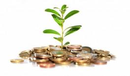 Инвестиции и инвестиционные площадки